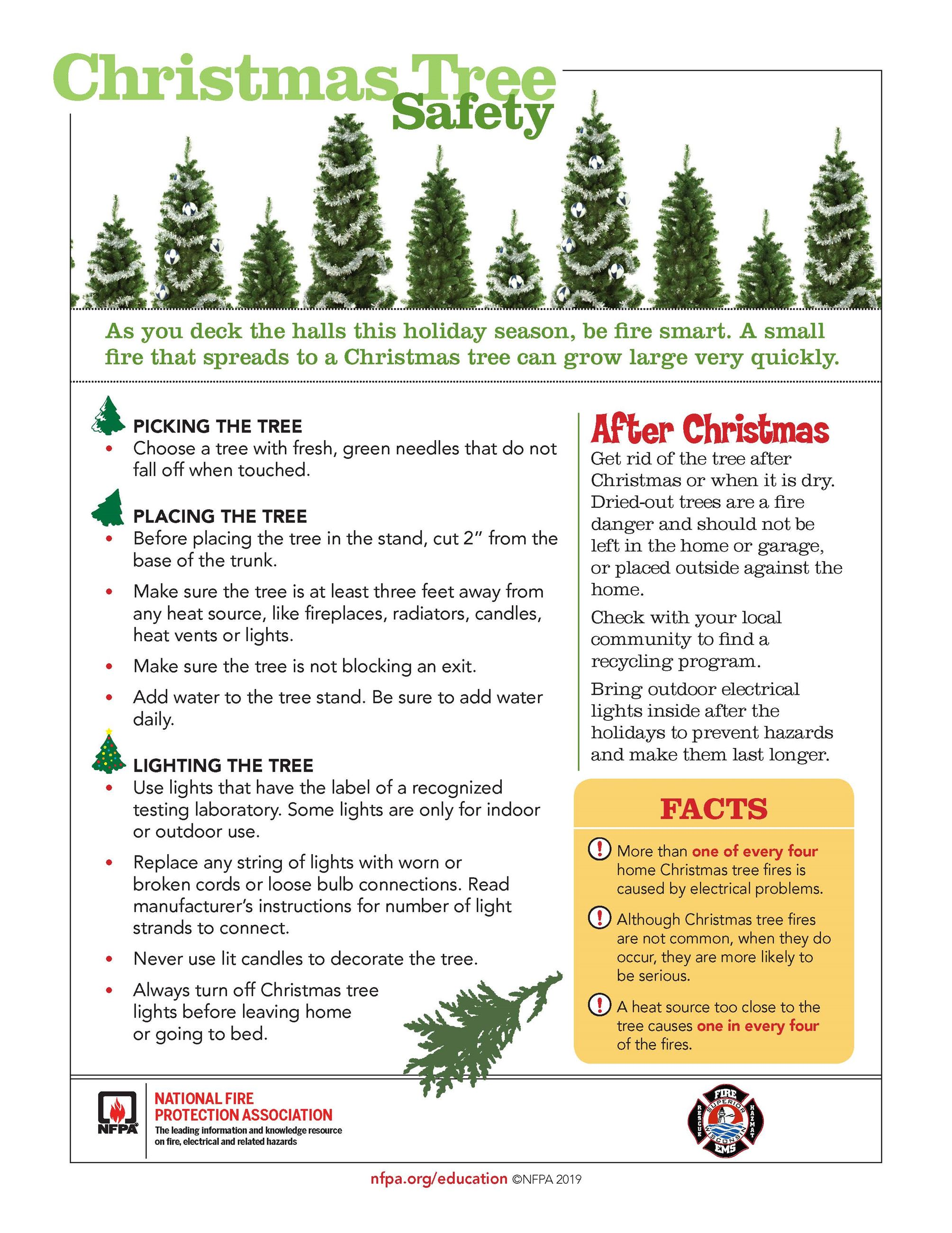 Christmas Tree Safety Tip sheet